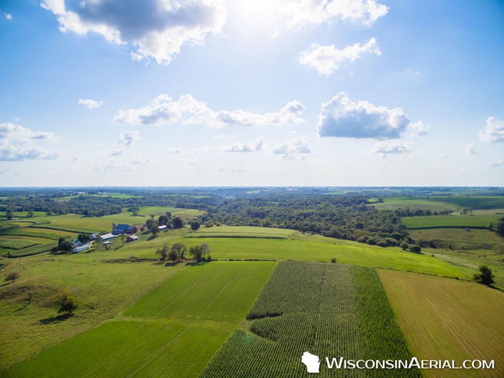 Cashton Farm Landscape